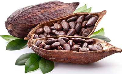 Cocoa-Bean-Chocolate