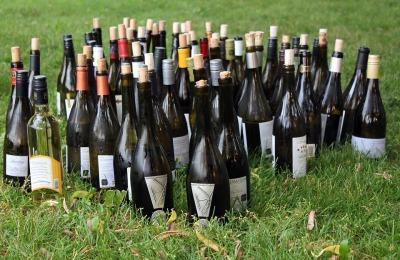 wine-bottles-1180187_960_720
