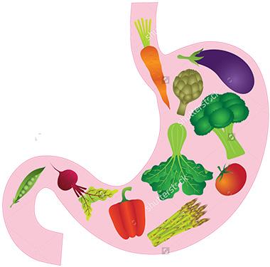 fruit-stomach