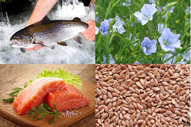 salmon-linseed