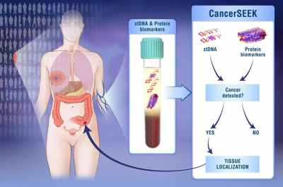 doctors-have-developed-a-noninvasive-blood-test-for-eight-types-of-cancer