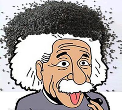 Sesame white hair